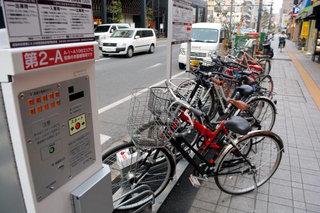 ... 好調 姫路市、常設化検討へ