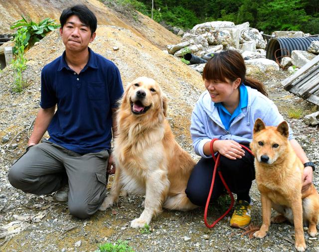 自転車の 松山 自転車 処分 : 災害救助犬として訓練を受けて ...
