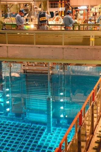 写真:燃料プールに運び込まれるMOX燃料集合体=高浜町田ノ浦 燃料プールに運び込まれるMOX燃料