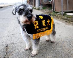 警察 犬 の 種類