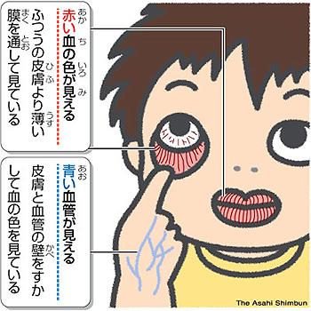 ののちゃんの画像 p1_13