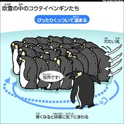 Asahi Com 動物は寒さにどう耐えるの ののちゃんのdo科学 nie 教育