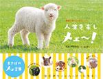 動物に学ぶ人生のヒント 人生を楽しメェ~!