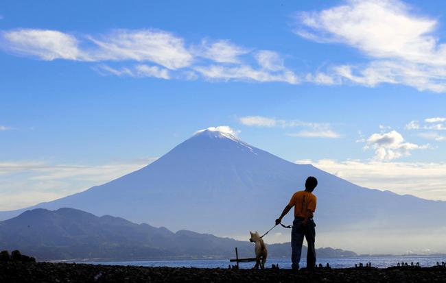写真 世界文化遺産に登録が決まった富士山=22日、静岡市清水区、杉本康弘撮影
