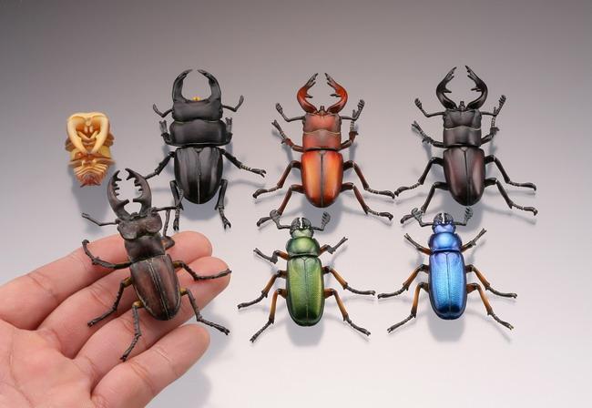 中のアイテム〉 【昆虫】日本 ... : 日本地図 教材 : 日本