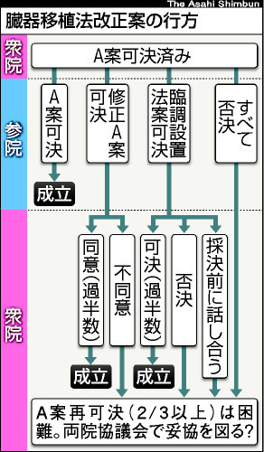 asahi.com(朝日新聞社):移植...