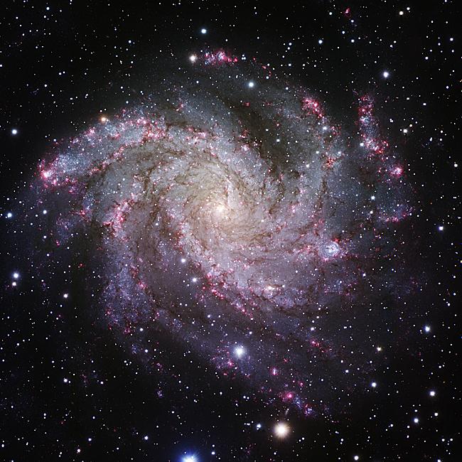 朝日新聞デジタル:【渦巻銀河NGC6946】ケフェウス座にある渦巻 ...