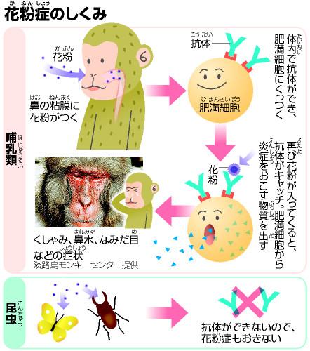朝日新聞社 NIE -教育に新聞を- ...
