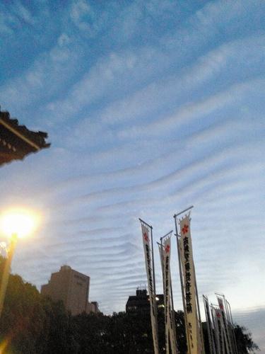 朝日新聞デジタル:「名古屋に地震雲」ツイート拡散 予兆?科学的根拠 ...
